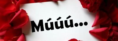 mu_400x140