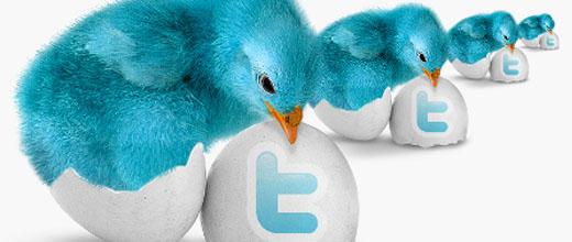 Passarinhos do twitter saindo do ovo
