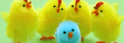 pintinhos de pelucia coloridos