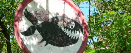 Placa de piranha em uma floresta