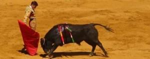 Homem vestido de toureiro contra touro em uma arena