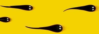 espermatozoides desenhados